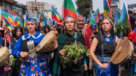 Estado plurinacional: el debate mapuche actual